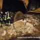 Stromausfall nach Abbrucharbeiten und Kabelbrand